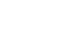 Ammtech Spring Logo